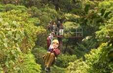 Zipline Canopy Adventure Tour – San Jose