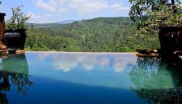 south-africa-tanamera-lodge-pool-view