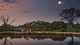 south_africa_leopard_hills_night_drive